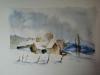 bess calme hivernal d apres manuelle merle 21 x 28 cm aquarelle