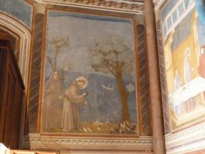 Fresque de Giotto sur la vie de Saint François d'Assise, basilique d'assise