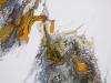 forky paysage acrylique liquide sur toile 60 x 60 cm