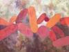 Ma-Uyi-Les-ailes-des-pierres-Acrylique-sur-toile-60x60-cm